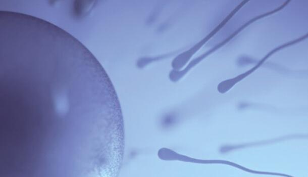Infertilité-et-stérilité-tunisie